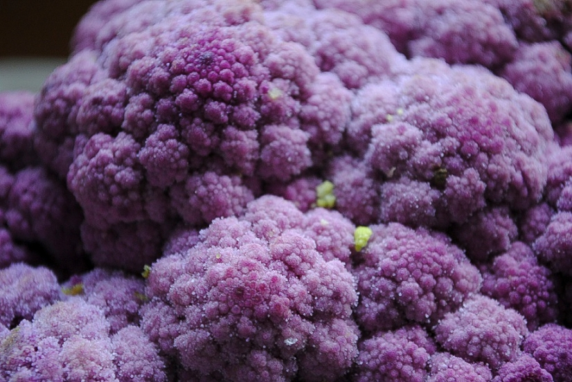 The Color Purple – Veggie Style