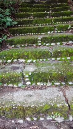 steps1