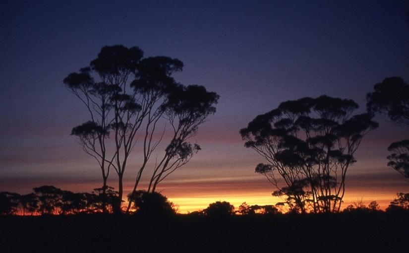 An Unforgettable AustralianAdventure